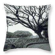 Lion Dog And Tree - Liliuokalani Park - Hawaii Throw Pillow