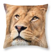 Lion In Deep Thought Throw Pillow
