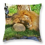 Lion In Repose Throw Pillow