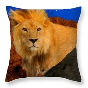 Lion In The Evening Throw Pillow