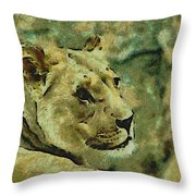 Lion Looking Back Throw Pillow