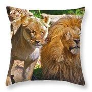 Lion Mates Throw Pillow