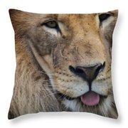 Lion Portrait Panting Throw Pillow