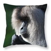 Lion Tailed Macaque Throw Pillow
