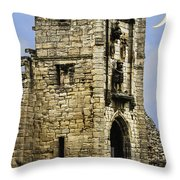 Lion Tower Throw Pillow