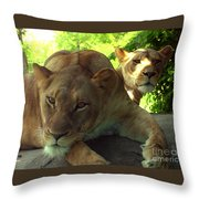 Lioness-00104 Throw Pillow