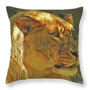 Lioness 2012 Throw Pillow