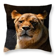 Lioness Hey Are You Looking At Me Throw Pillow