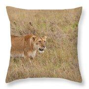 Lioness, Kenya Throw Pillow