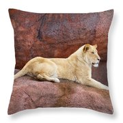 Lioness On A Red Rock Throw Pillow