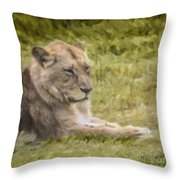 Lioness Resting Throw Pillow