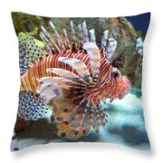 Lionfish Throw Pillow