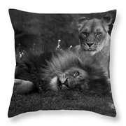 Lions Me And My Guy Throw Pillow