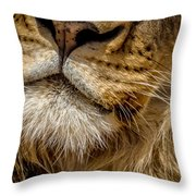 Lions Mouth 2 Throw Pillow