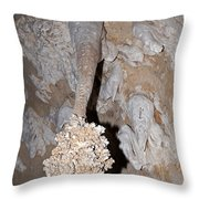 Lions Tail Carlsbad Caverns National Park Throw Pillow