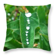 Liquid Lineup Throw Pillow