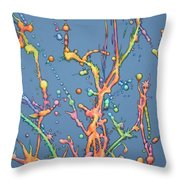 Liquid Rainbow Throw Pillow by James W Johnson