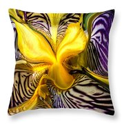 Liquified Orchid Throw Pillow