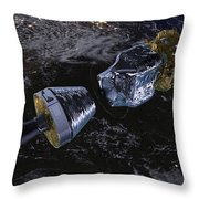 Lisa Pathfinder Throw Pillow