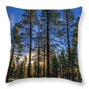 Lit Up Trees Throw Pillow
