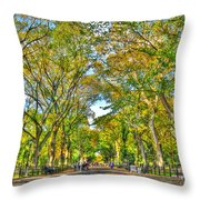 Literary Walk In Central Park Throw Pillow