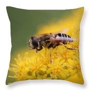 Little Bee Throw Pillow