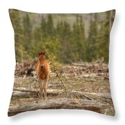Little Big Boss Throw Pillow