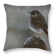 Little Bird Loving The Snow Throw Pillow