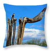 Little Bird On Tall Dead Saguaro Throw Pillow