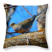 Little Birdie 2 Throw Pillow