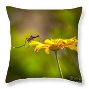Little Biter Throw Pillow by Marvin Spates