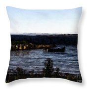 Little Black Boat Abstraction Throw Pillow