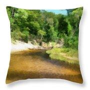 Little Black Creek - Hoffmaster State Park Throw Pillow