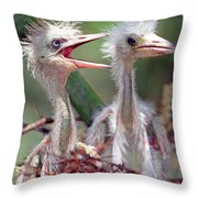 Little Blue Heron Egretta Caerulea Throw Pillow