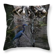 Little Blue Heron Throw Pillow by Skip Willits