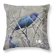 Little Blue Lake Martin Louisiana Throw Pillow
