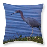 Little Blue Strut Throw Pillow