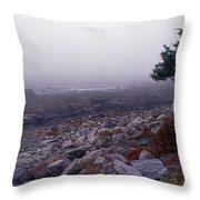 Little Boars Head Beach Throw Pillow