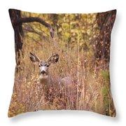 Little Buck Throw Pillow