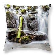 Little Cascade In Marlay Park Throw Pillow