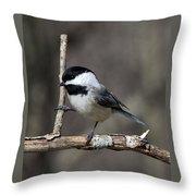 Little Chickadee 2 Throw Pillow