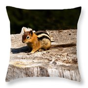 Little Chipmunk Throw Pillow