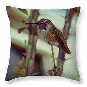 Little Costa's Hummingbird Throw Pillow