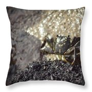 Little Crab Throw Pillow