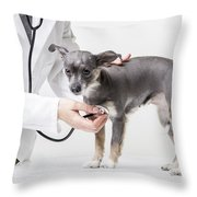 Little Dog At The Vet Throw Pillow