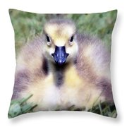 Little Duckling Throw Pillow