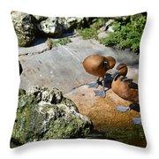 Little Ducks Throw Pillow