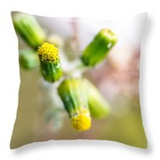 Little Flower 03 Throw Pillow