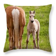 Little Foal Throw Pillow
