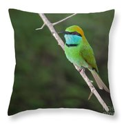Little Green Bee-eater  Merops Orientalis Throw Pillow